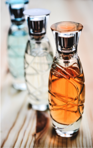 The Fragrance Society | What it is and How it Works